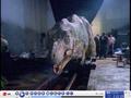 Maletyrannosaurusanimatronic3