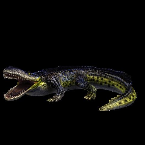480 x 480 png 104kBPurussaurus