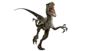 Jurassic world velociraptor v3 by sonichedgehog2-da77482