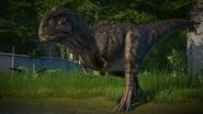 MajuMr.Jurassic