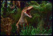 Raptor tlw