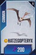 Hatzegopteryx