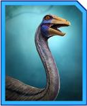 OrnithomimusProfile