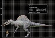 Spinosaurus aegyptiacus comparacion