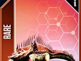 Diplosuchus/JW: TG