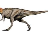 Teratophoneus