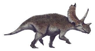 Agujaceratops life restoration
