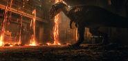 Fallen Kingdom Magma