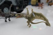 Dimorphodon FK Toy