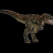 JPOG Albertosaurus2