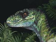M raptor profile