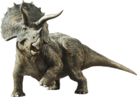 Jurassic world fallen kingdom triceratops by sonichedgehog2-dc9dwcu