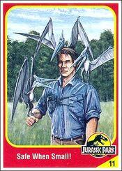 Alan grant collector card