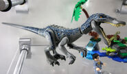 Lego-jurassic-world-baryonyx-face-off-the-treasure-hunt-75935-dino-seite-new-york-toy-fair-2019-zusammengebaut-andres-lehmann