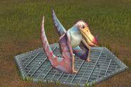 Limnorhynchus (1)
