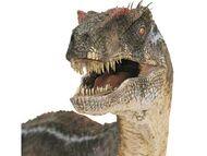 Velociraptor-head