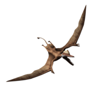 Darwinopterus-jurassic-world-the-game