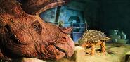 Triceratops-1600