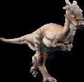 Dracothumb
