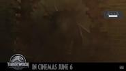 Screenshot 2018-05-20 at 11.09.46 AM