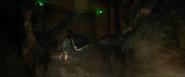 Allosaurus Gas5