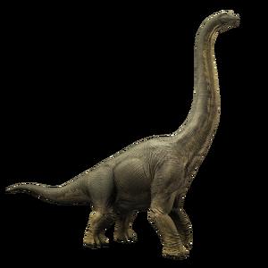 Brachiosaurus JWA Press Kit
