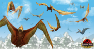 Count the Pteranodons