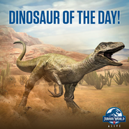 Velociraptor Dino of the Day