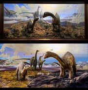 Diplodocus diorama