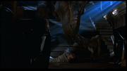 Father rex traps Ledlow