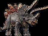 Stegoceratops Beta