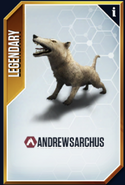 Andrewsarchus New Card