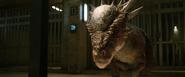 Stygimoloch Recovery