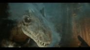 Allosaurus-Attack-Battle-at-big-Rock-7