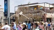 Skeleton-exterior