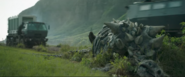 Unidentified Deceased Ankylosaur