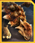 Ankylosaurus Icon JWA