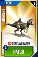 Concavenator card