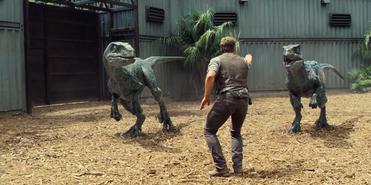 Jurassic-World-Velociraptors-3