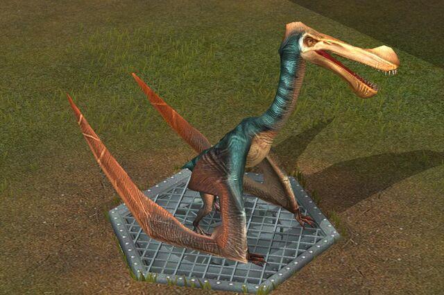 File:Tropeogopterus (1) (Hybrid of Tropeognathus + Zhejiangopterus).jpg