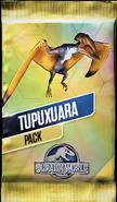 Tupuxuara Pack