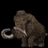 JWA PressKit Woolly Mammoth