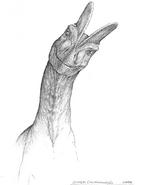 Jurassic park concept art curious dilophosaurus by indominusrex-dbp9ek9