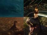 Épidémie de Dinosaures en 2018