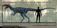 Dilophosaurus-size (1)
