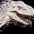 Indominus rex Icon Evolution
