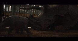 Jwfk triceratops ii by gojirafan1994 dcg2lg9-pre