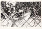 JP Raptor's Attack Fence