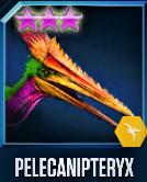 Pelecanipteryx 40 Icon