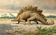 Stegosaurus real